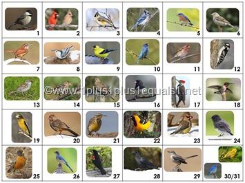 Calendar Connections Backyard Birds K-2 SMALL