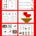 Counting-is-for-the-Birds-Kindergarten-Literature-unit.jpg