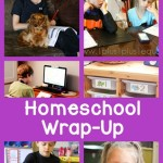Monthly-Homeschool-Wrap-Up-March-2015.jpg