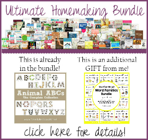 Ultimate Homemaking Bundle Extra Bonus 300