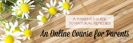 parents-guide-salespage-header