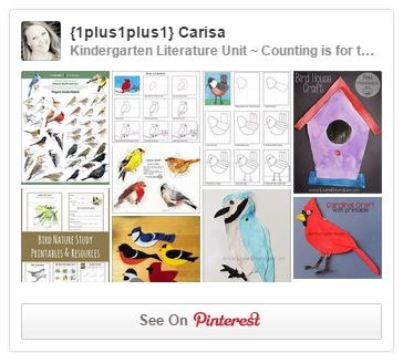 Bird Pinterest Board