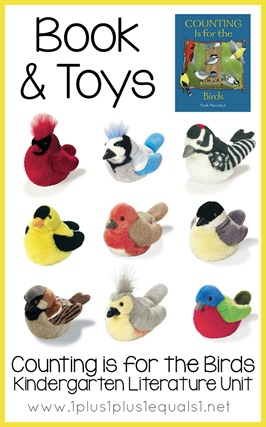 Bird Toys and Books