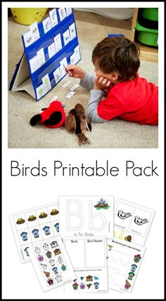 Birds Printable Pack