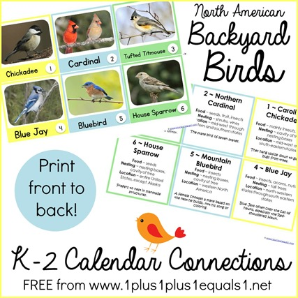 Calendar Connections Backyard Birds K-2