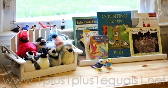 Counting is for the Birds -6893