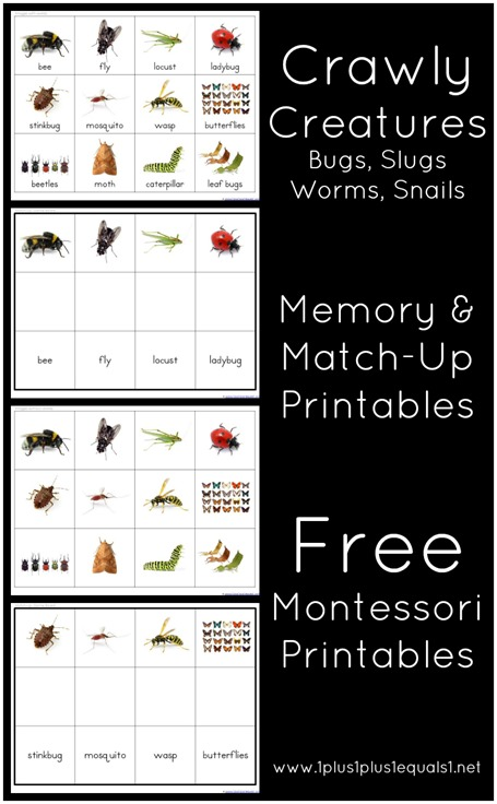 Crawly Creatures Memory and Match Up Printables
