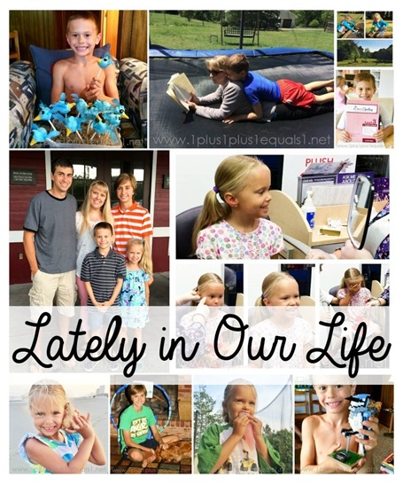 Lately in our Life May 2015