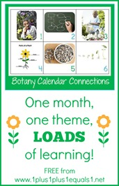 Botany Theme Calendar Connections