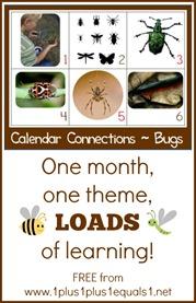 Bug Theme Calendar Connections