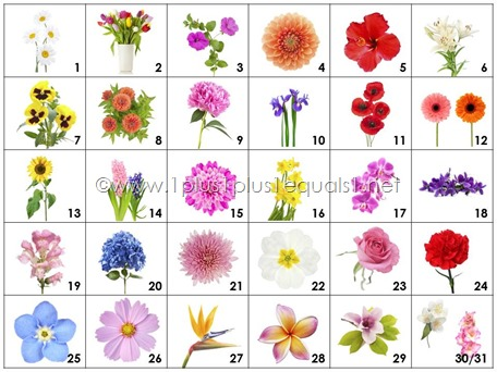 Calendar Connections  SMALL Flowers
