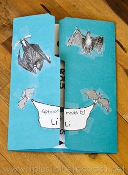 Bats -8288