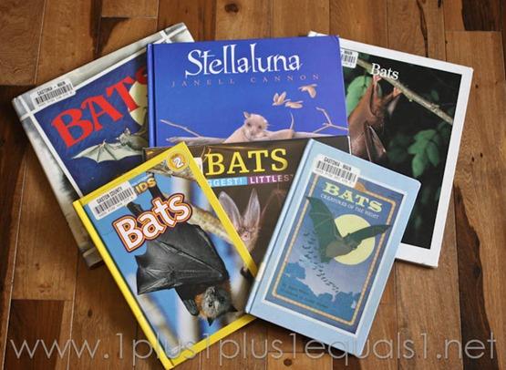 Bats -8361