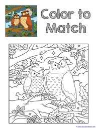 Download The Owls Coloring Printables And More Here