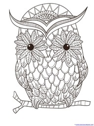 just color owl coloring printables 1111