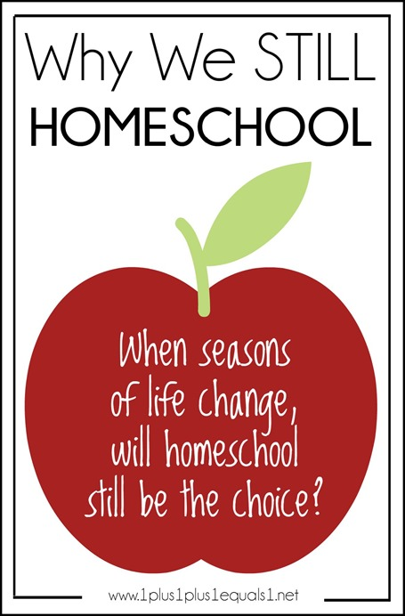 Why We Still Homeschool Even After Life Changes