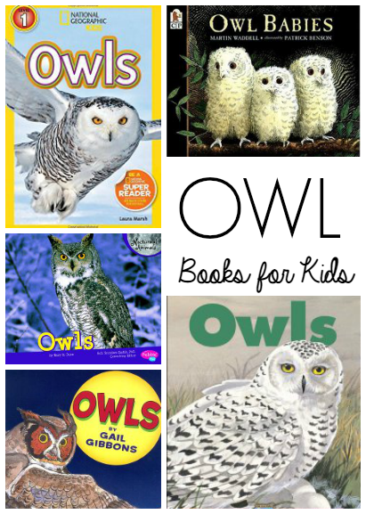 Owl Books for Kids