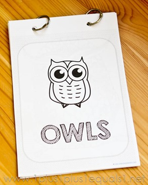 Owl Coloring -8484