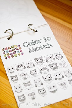 Owl Coloring -8490