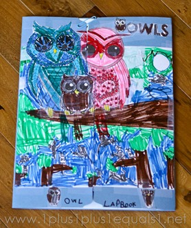 Owl Lapbook -8823