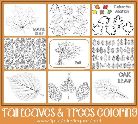 fall leaves and trees coloring pages - Tree Leaves Coloring Page