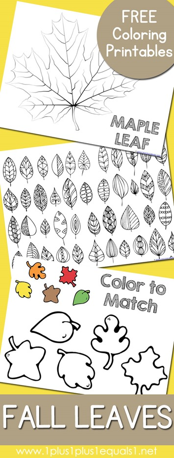 Fall Leaves and Trees Coloring Printables  1111