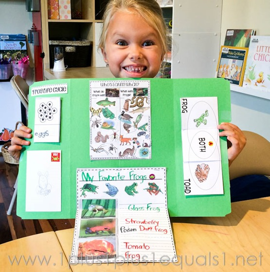 Frog Lapbook -0393