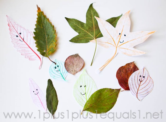 Leaf Friends -0332