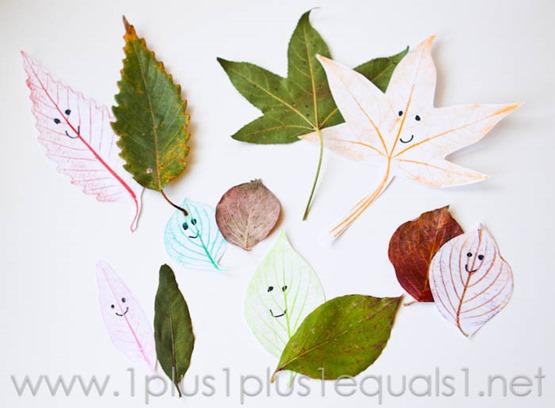 Leaf Friends -0332