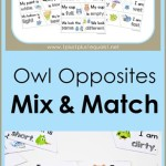 Owl-Opposites-Mix-and-Match-printables.jpg