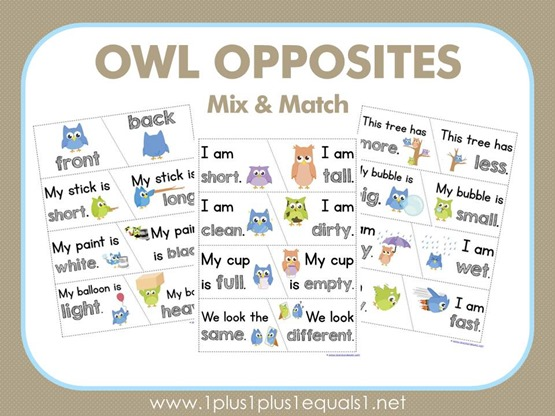 Owl Opposites Mix and Match