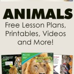 Learn-About-Animals-with-Free-Resources-from-IFAW.jpg