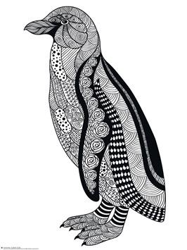 Penguin Doodle Coloring (3)