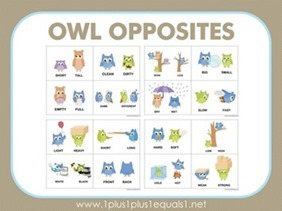 Owl-Opposites-Flashcards411