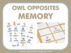 Owl-Opposites-memory3