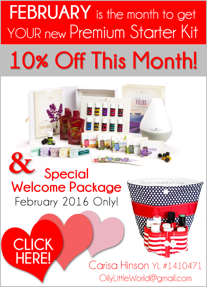 Promotional Offer February 2016 Blog Sidebar