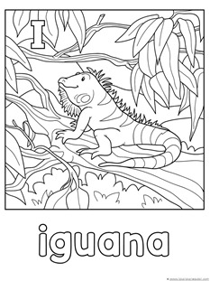 Animal Alphabet Coloring Pages Letters GL 1111