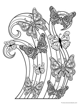 Butterfly Coloring (1)