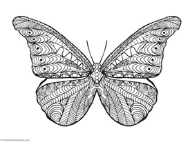 butterfly coloring 2 - Butterfly Coloring Pages