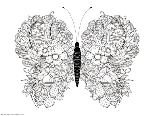 Butterfly Coloring (4)