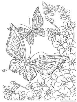 Butterfly Coloring Pages 1 1 1 1