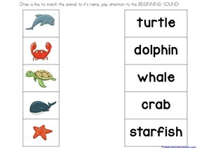 Ocean Animals Preschool Printables (18)