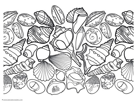 coloring pages of sea shell - photo#2