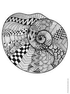 Seashell Coloring (8)
