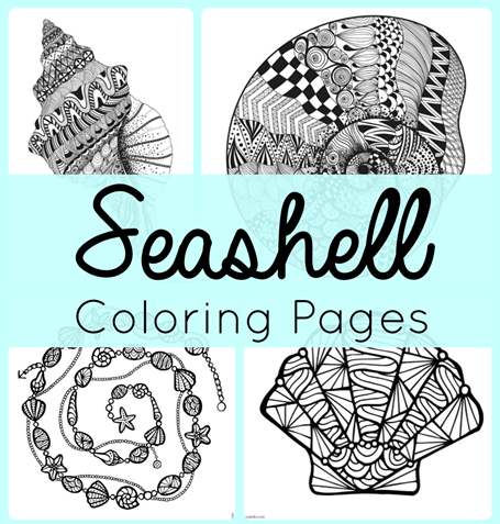 Seashell Coloring