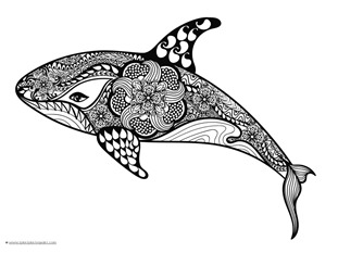 dolphin and whale coloring pages 1 - Dolphins Coloring Pages