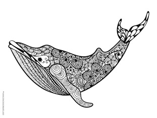 Dolphin and Whale Coloring Pages (11)