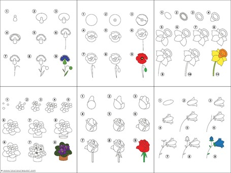 Flower Drawing Tutorials (1)