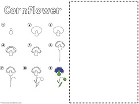 Flower Drawing Tutorials (6)