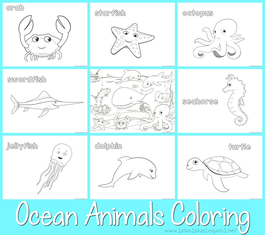 ocean animals plants coloring pages - photo#39